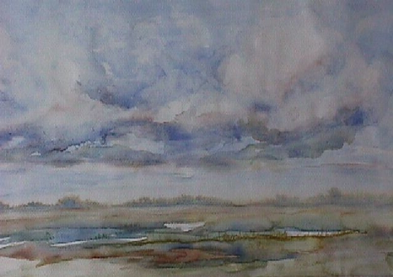 landschap-10
