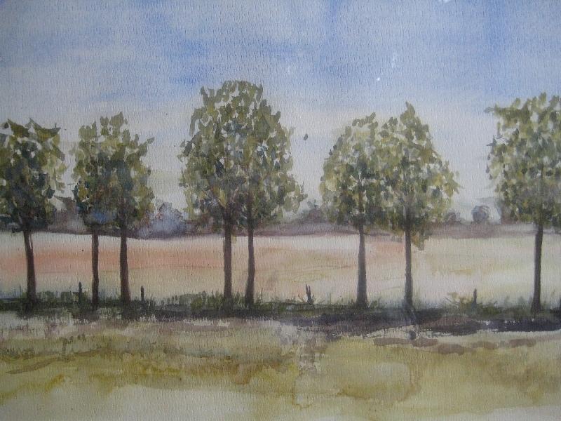 landschap-2