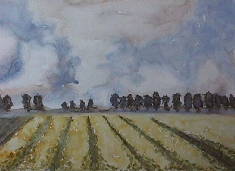 landschap-4