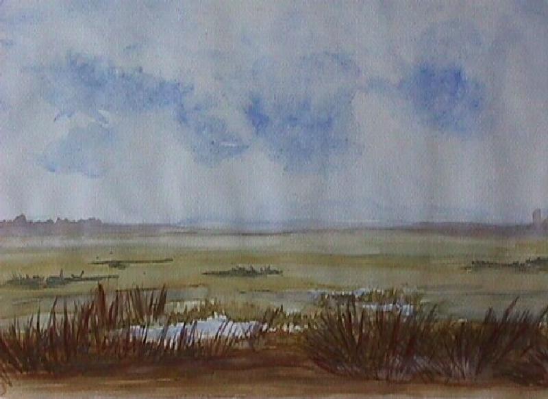 landschap-7